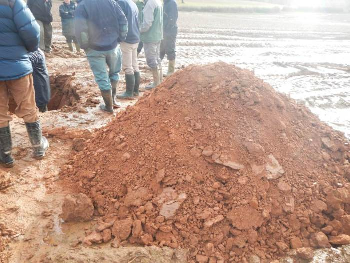 Dry soil beneath compacted soil